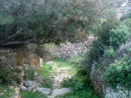 Τρυπητή - Μονή Αγίας Βαρβάρας